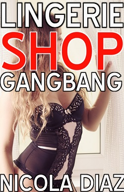cover design for the book entitled Lingerie Shop Gangbang
