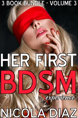 cover design for the book entitled Her First BDSM Experience