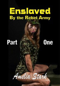cover design for the book entitled Enslaved by the Rebel Army: Part One