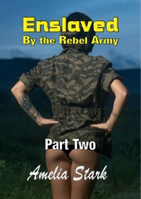 cover design for the book entitled Enslaved by the Rebel Army Part Two