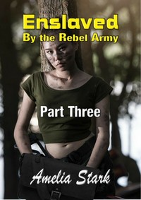 cover design for the book entitled Enslaved by the Rebel Army: Part Three