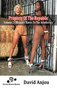 Property of The Republic - Volume Two  by David Anjou