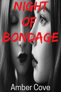 cover design for the book entitled Night of Bondage