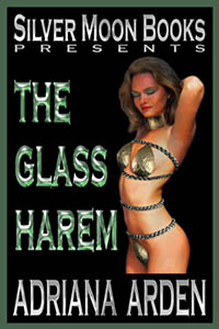 cover design for the book entitled The Glass Harem