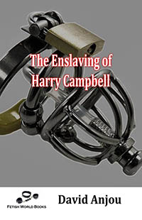 The Enslaving of Harry Campbell by David Anjou