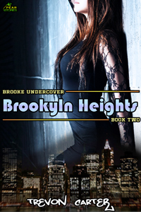 cover design for the book entitled Brooklyn Heights