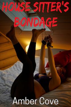 House Sitter's Bondage