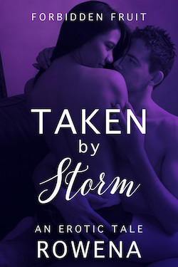 cover design for the book entitled Taken by Storm