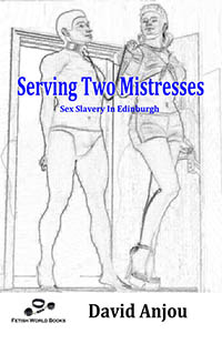 cover design for the book entitled Serving Two Mistresses