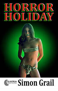 cover design for the book entitled Horror Holiday