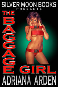 cover design for the book entitled The Baggage Girl