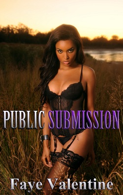 cover design for the book entitled Public Submission