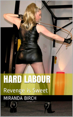 cover design for the book entitled Hard Labor