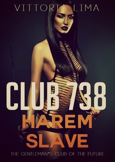 cover design for the book entitled Club 738: Harem Slave