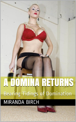cover design for the book entitled A Domina Returns