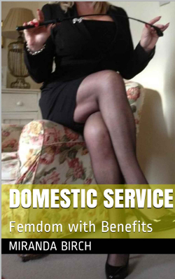 cover design for the book entitled Domestic Service