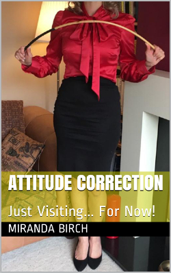 cover design for the book entitled Attitude Correction
