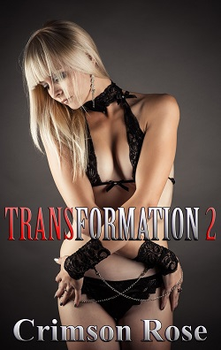cover design for the book entitled Transformation 2