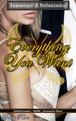 cover design for the book entitled Everything You Want