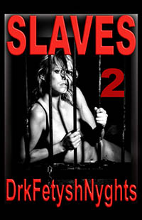 cover design for the book entitled SLAVES 2