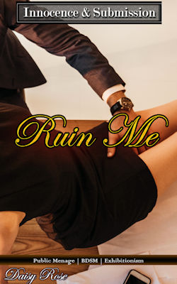 cover design for the book entitled Ruin Me