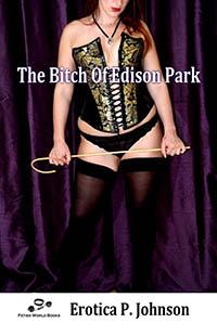 The Bitch of Edison Park