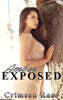 cover design for the book entitled Amber Exposed