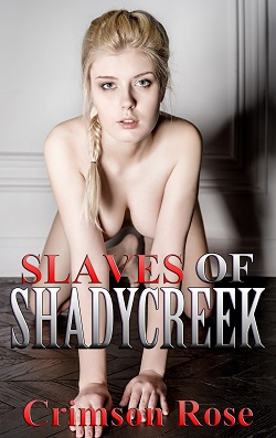cover design for the book entitled Slaves of Shadycreek