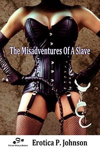 The Misadventures of a Slave