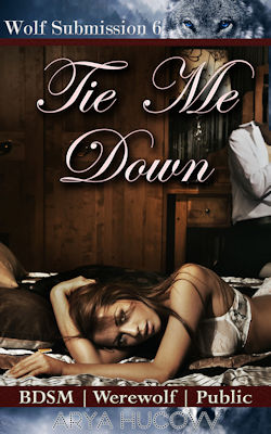 cover design for the book entitled Tie Me Down