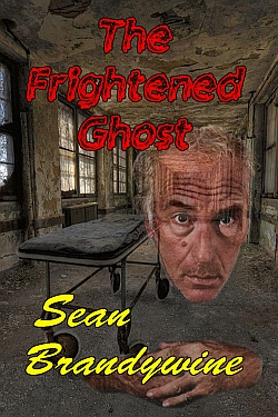 The Frightened Ghost