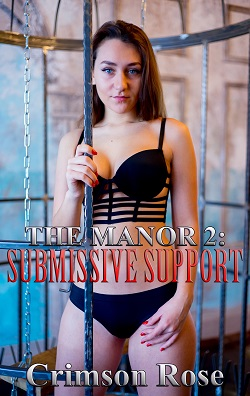 The Manor 2: Submissive Support