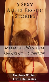 cover design for the book entitled 5 Sexy Adult Erotic Stories