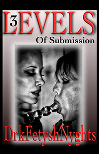 cover design for the book entitled 3 LEVELS OF SUBMISSION