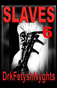 cover design for the book entitled SLAVES 6