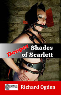 cover design for the book entitled Deeper Shades of Scarlett