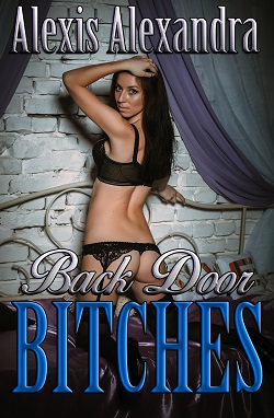 cover design for the book entitled Backdoor Bitches