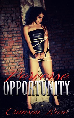 cover design for the book entitled Perverse Opportunity