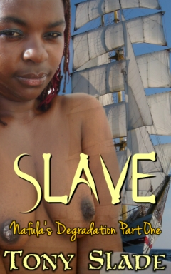 cover design for the book entitled Slave