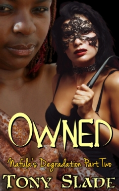 cover design for the book entitled Owned