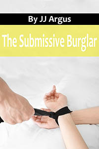 cover design for the book entitled The Submissive Burglar