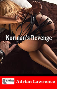 cover design for the book entitled Norman