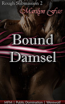 cover design for the book entitled Bound Damsel