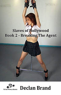 cover design for the book entitled Slaves of Hollywood 2 - Breaking The Agent