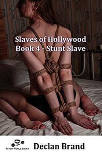cover design for the book entitled Slaves of Hollywood 4 - Stunt Slave