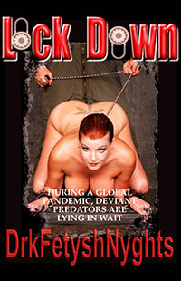 cover design for the book entitled LOCK DOWN