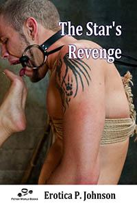 cover design for the book entitled The Stars Revenge