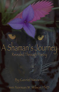 A Shaman s Journey Revealed Through Poetry