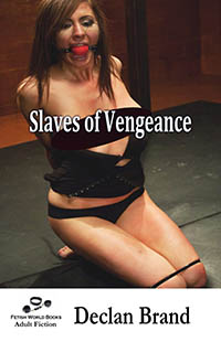 cover design for the book entitled Slaves of Vengeance