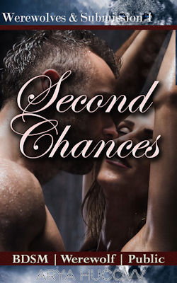 cover design for the book entitled Second Chances